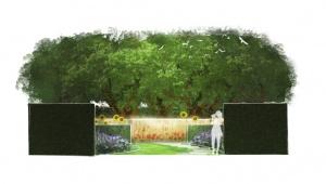 Truc koele en warme kleuren kleine tuin groter