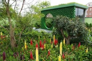 tuinontwerp chelsea flower show