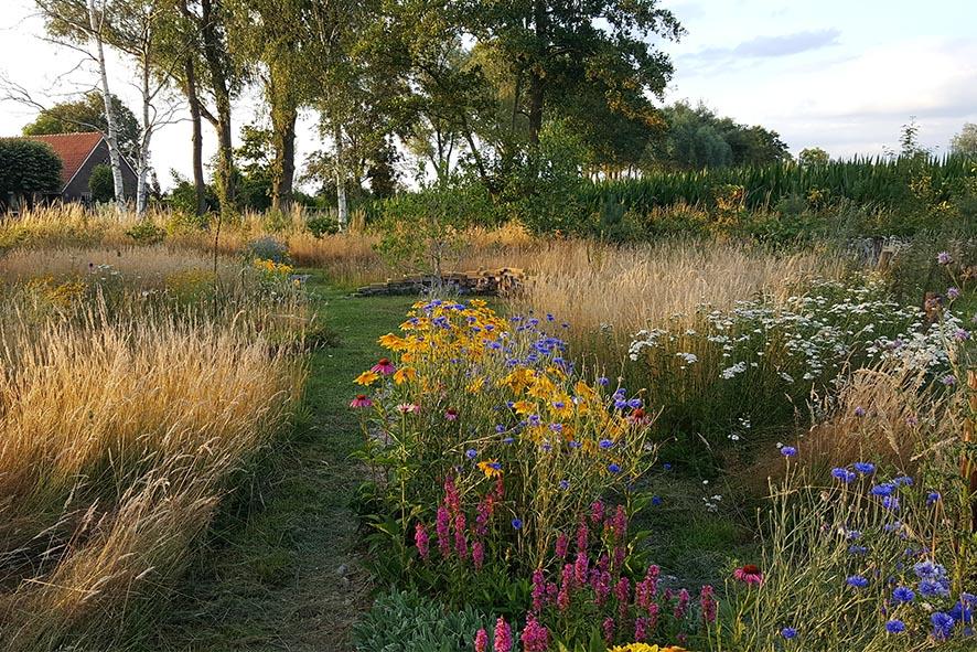 modeltuin beplantingsplan natuurlijke tuin